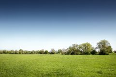 πράσινο τοπίο πεδίων Στοκ Εικόνα