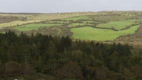 Πράσινο τοπίο της Ιρλανδίας φιλμ μικρού μήκους