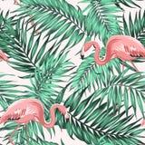 Πράσινο τροπικό ζεύγος φλαμίγκο μεταλλικού θόρυβου φύλλων ζουγκλών απεικόνιση αποθεμάτων