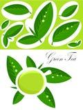 πράσινο τσάι ανασκόπησης Στοκ Φωτογραφίες