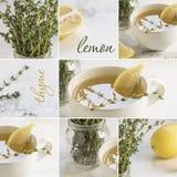Πράσινο τσάι κολάζ με το φρέσκα θυμάρι και το λεμόνι στοκ φωτογραφίες