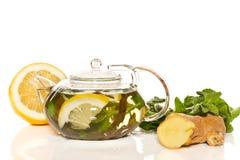 Πράσινο τσάι με τη μέντα και την πιπερόριζα στοκ εικόνες