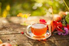 Πράσινο τσάι στο όμορφο φλυτζάνι Στοκ Εικόνες