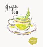 πράσινο τσάι διανυσματική απεικόνιση