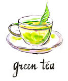 Πράσινο τσάι Watercolor Στοκ Εικόνα