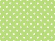 Πράσινο υπόβαθρο με τα λουλούδια chamomile Στοκ Εικόνα