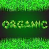 Πράσινο υπόβαθρο με το κείμενο που γίνεται από τα φύλλα οργανικά Απεικόνιση με τις φυτικές χλόες επίσης corel σύρετε το διάνυσμα  Στοκ εικόνες με δικαίωμα ελεύθερης χρήσης