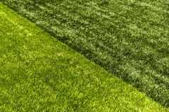 Πράσινο υπόβαθρο τομέων χλόης, σύσταση, σχέδιο Στοκ Φωτογραφίες