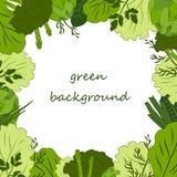 πράσινο υπόβαθρο τροφίμων Στοκ Φωτογραφίες