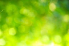Πράσινο υπόβαθρο Bokeh της φύσης Στοκ εικόνα με δικαίωμα ελεύθερης χρήσης