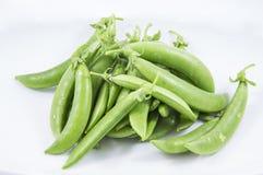 Πράσινο φασόλι στο άσπρο υπόβαθρο Στοκ εικόνα με δικαίωμα ελεύθερης χρήσης