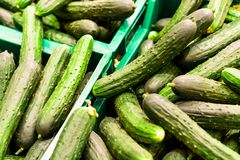Πράσινο φρέσκο αγγούρι στο κιβώτιο στην πώληση στο κατάστημα τροφίμων παντοπωλείων Στοκ φωτογραφία με δικαίωμα ελεύθερης χρήσης