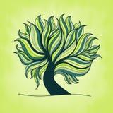 Πράσινο φρέσκο ζωηρόχρωμο δέντρο με τους κλάδους και τα φύλλα Στοκ Φωτογραφία