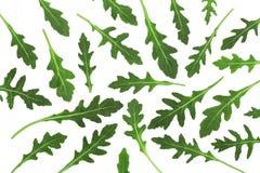 Πράσινο φρέσκο φύλλο rucola ή arugula που απομονώνεται στο άσπρο υπόβαθρο Τοπ όψη Επίπεδος βάλτε το σχέδιο Στοκ εικόνες με δικαίωμα ελεύθερης χρήσης
