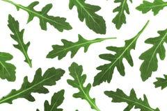 Πράσινο φρέσκο φύλλο rucola ή arugula που απομονώνεται στο άσπρο υπόβαθρο Τοπ όψη Επίπεδος βάλτε το σχέδιο Στοκ φωτογραφίες με δικαίωμα ελεύθερης χρήσης