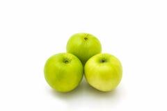 Πράσινο φρέσκο mauritiana Ziziphus, Jujube, η κινεζική Apple Στοκ Εικόνες