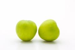 Πράσινο φρέσκο mauritiana Ziziphus, Jujube Στοκ Εικόνες