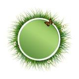 Πράσινο φυσικό πλαίσιο με τη χλόη διανυσματική απεικόνιση