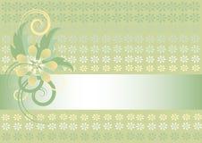 πράσινο φως λουλουδιών & Στοκ φωτογραφίες με δικαίωμα ελεύθερης χρήσης