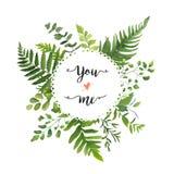 Πράσινο φύλλων στεφάνι φύλλων πρασινάδων φυλλώματος διανυσματικό στρογγυλό eucaly ελεύθερη απεικόνιση δικαιώματος