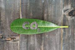 Πράσινο φύλλο με το κείμενο του CO2 στη μαύρη ξύλινη περίληψη υποβάθρου Στοκ εικόνα με δικαίωμα ελεύθερης χρήσης