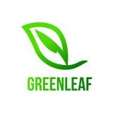 Πράσινο φύλλο, λογότυπο φύλλων Στοκ Εικόνες