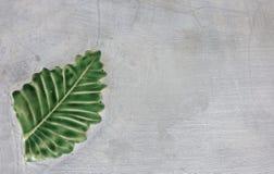 Πράσινο φύλλο στο γκρίζο συγκεκριμένο υπόβαθρο σύστασης Διάστημα για τις ιδέες Στοκ φωτογραφία με δικαίωμα ελεύθερης χρήσης