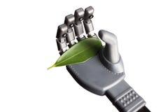 Πράσινο φύλλο στο ρομποτικό χέρι που απομονώνεται στο λευκό Στοκ φωτογραφία με δικαίωμα ελεύθερης χρήσης