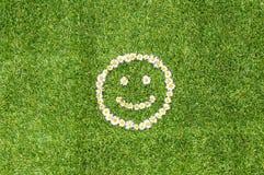 Πράσινο χαμόγελο μαργαριτών χλόης Στοκ φωτογραφία με δικαίωμα ελεύθερης χρήσης