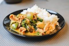 Πράσινο χοιρινό κρέας κάρρυ στο γάλα καρύδων με τη μελιτζάνα και το βρασμένο στον ατμό ρύζι Στοκ εικόνα με δικαίωμα ελεύθερης χρήσης
