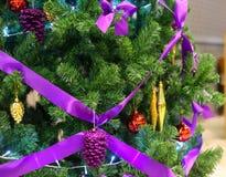 Πράσινο χριστουγεννιάτικο δέντρο με τον πορφυρό κόμβο Στοκ εικόνες με δικαίωμα ελεύθερης χρήσης