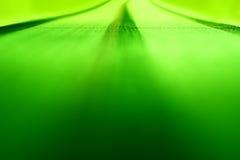 Πράσινο δωμάτιο που καλύπτει το υπόβαθρο με τάπητα Στοκ φωτογραφίες με δικαίωμα ελεύθερης χρήσης