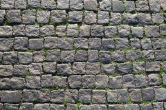 Πράσινο ύφος πετρών επίστρωσης σύστασης χλόης άνευ ραφής Στοκ εικόνες με δικαίωμα ελεύθερης χρήσης