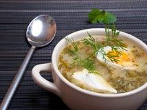 Πράσινο borscht Στοκ Φωτογραφίες