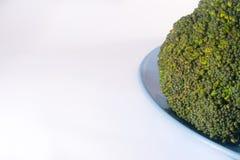 Πράσινο Brocolli στο μπλε πιάτο στο άσπρο υπόβαθρο Στοκ Εικόνες