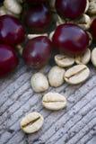 Πράσινο coffe (arabica coffea) Στοκ φωτογραφίες με δικαίωμα ελεύθερης χρήσης