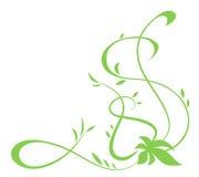 Πράσινο floral στοιχείο για το σχέδιο διανυσματική απεικόνιση