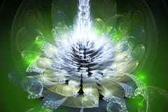 Πράσινο fractal λουλούδι Στοκ Εικόνα