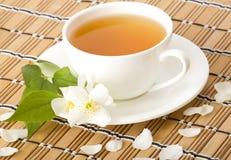 πράσινο jasmine τσάι Στοκ Φωτογραφίες