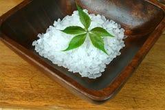 πράσινο leaf spa στοκ εικόνα με δικαίωμα ελεύθερης χρήσης