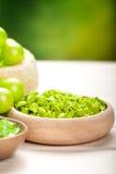 πράσινο minerals spa Στοκ φωτογραφία με δικαίωμα ελεύθερης χρήσης