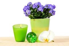 πράσινο orchid κεριών wellness Στοκ Εικόνες