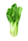 Πράσινο pakchoi λαχανικών που απομονώνεται στο άσπρο υπόβαθρο στοκ φωτογραφία με δικαίωμα ελεύθερης χρήσης