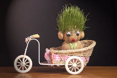 Πράσινο Teddy στοκ εικόνα με δικαίωμα ελεύθερης χρήσης