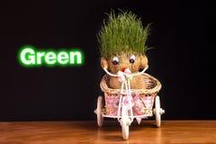 Πράσινο Teddy στοκ εικόνα