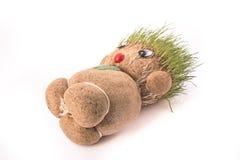 Πράσινο Teddy στοκ εικόνες με δικαίωμα ελεύθερης χρήσης