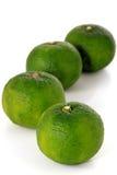 Πράσινο Yuzu: Τα junos εσπεριδοειδών είναι ένα είδος ιαπωνικών εσπεριδοειδών στοκ φωτογραφία με δικαίωμα ελεύθερης χρήσης