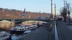 ΠΡΑΓΑ, ΔΗΜΟΚΡΑΤΊΑ ΤΗΣ ΤΣΕΧΊΑΣ - 3 ΔΕΚΕΜΒΡΊΟΥ 2016 Ποταμόπλοια Vltava, πετώντας γλάρος και γέφυρα Cechuv Δημοφιλής τουριστικός Στοκ Εικόνες