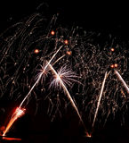Πραγματικά απομονωμένα πυροτεχνήματα, δασικό σχέδιο δέντρων καρύδων Στοκ Εικόνα