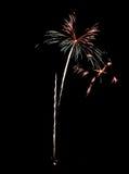 Πραγματικά απομονωμένα πυροτεχνήματα, σχέδιο λουλουδιών Στοκ Εικόνα